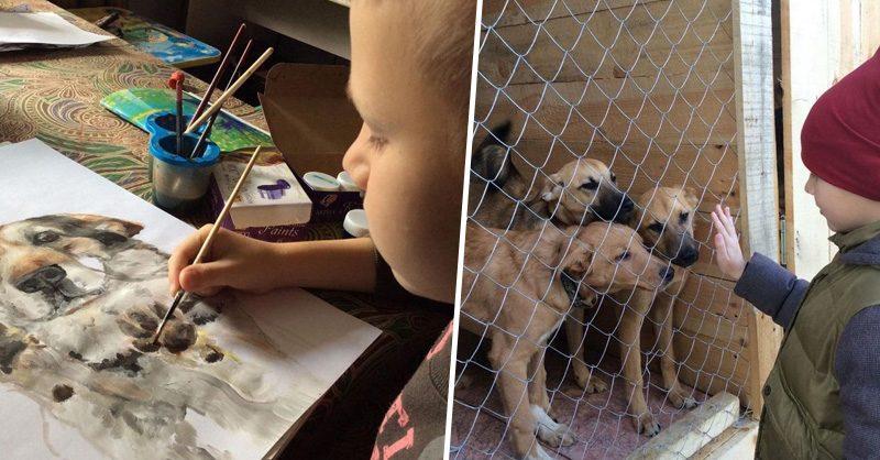 Мальчику удалось собрать 700 кг корма, чтобы помочь животным из приюта
